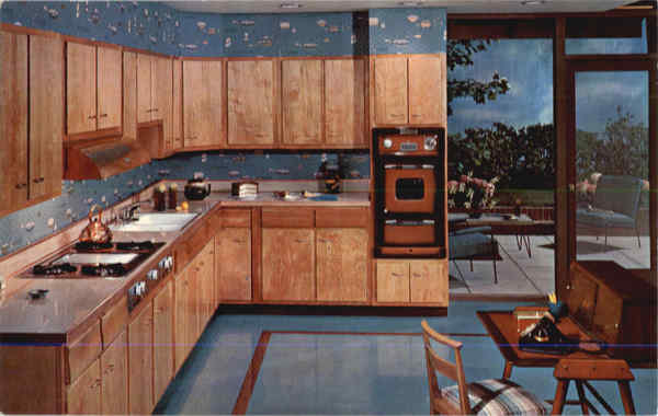 Scheirich Cabinets Make Yours a Dream Kitchen too