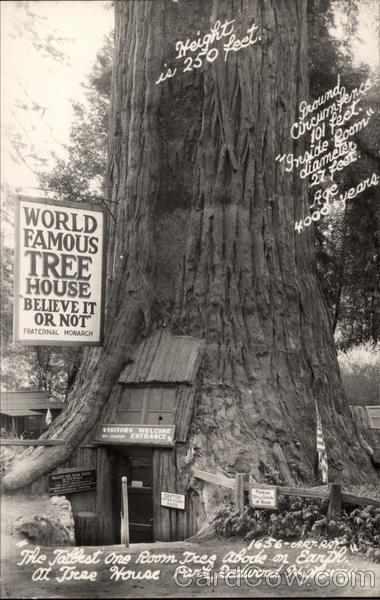 World Famous Tree House Redwood Highway CA