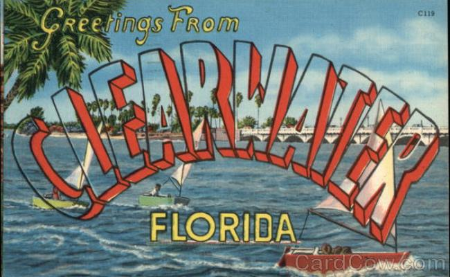 Greetings From Clearwater Florida Postcard