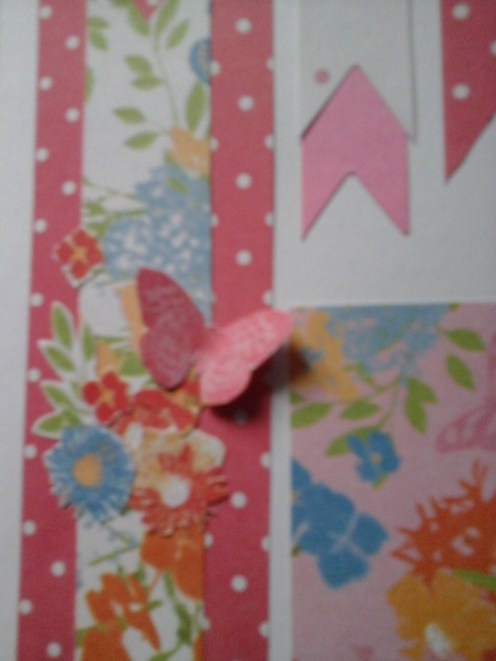 zoom of butterfly on banner card looking down