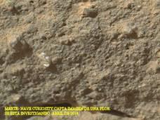 MARTE-Curiosity capta imagen flor