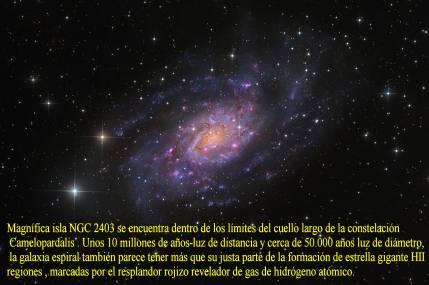 NGC2403- En camelopardalis