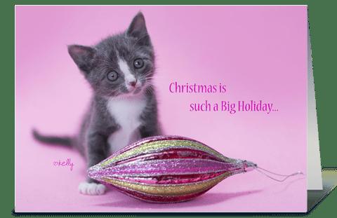 Enjoy Christmas Kitten