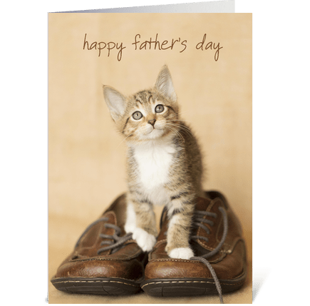 Father's Day Kitten on Dad's Shoes