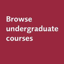 browse undergrad courses