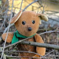 When the school teddy comes to stay… and things don't go to plan