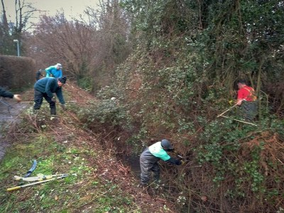CRG volunteers cutting back thick brambles