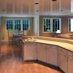 Remodel My Kitchen Cat Example Of Work! | Cardinalcresthomes