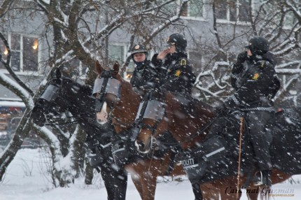 It was a cold day for both police, journalists, animals and demonstrators.
