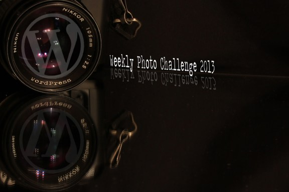 NI_WPC2013-1200x800