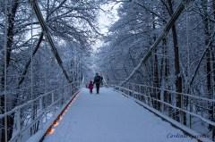 winter-bridge_8108