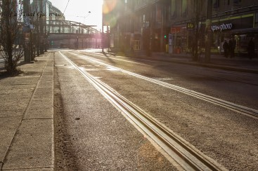Tram line in low morning sun.