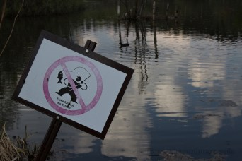 This one's more sad than fun: Fishing is prohibited in the Oslo lake Østensjøvannet because it's severly polluted.