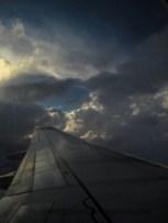 fly_6764