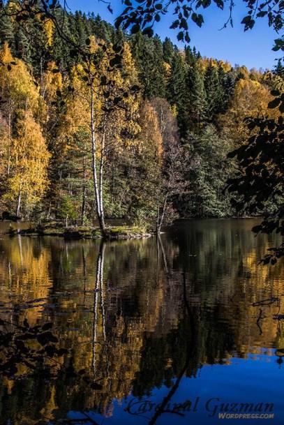 autumn_5732