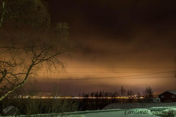 Alta City by night