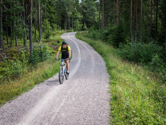 Cyclist near Maridalsvannet.