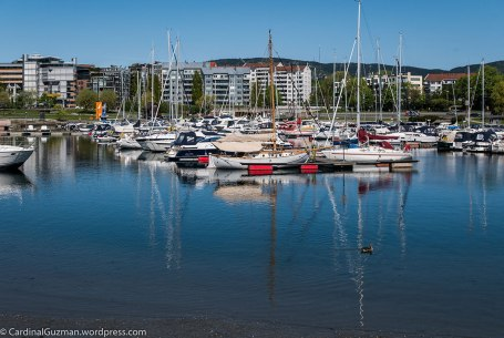 The marina by Bygdøylokket.