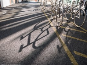 The Bikes in Bjørvika