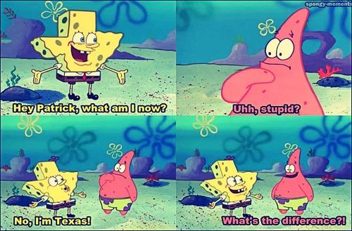texas is stupid