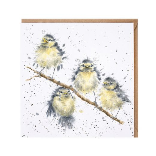 'Hanging out with Friends' birds card