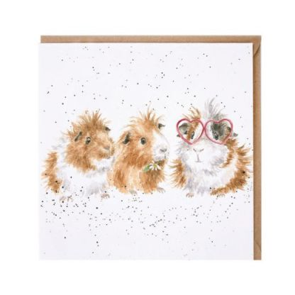 The Trendsetter Guinea Pigs Card