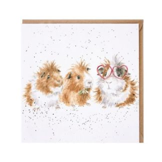 The Trendsetter Guinea Pigs Card