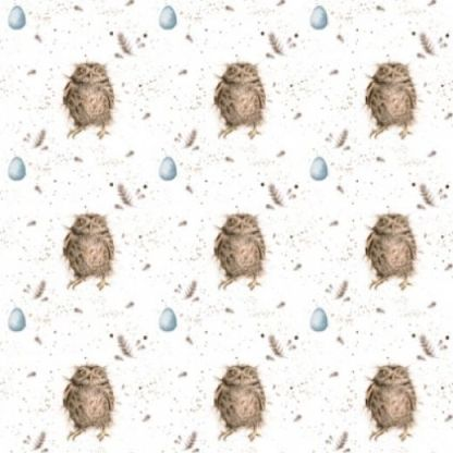 Treetop feathers owl gift wrap