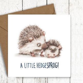 Hedgesprog baby hedgehog card