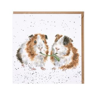 Lettuce be Friends Guinea Pig card