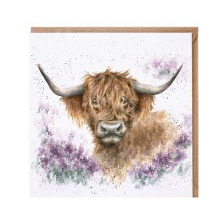 Highland Heathers Cow card