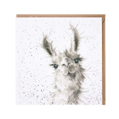 Because I'm worth it llama card