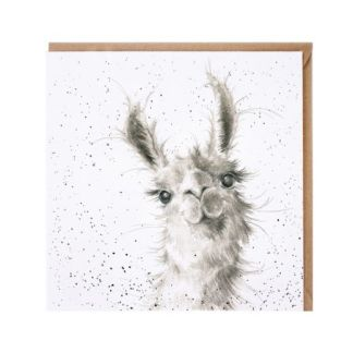 Because I'm worth it llama card
