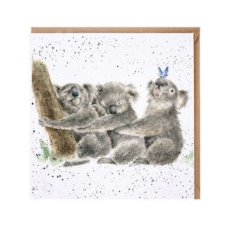 Three of a kind koala card