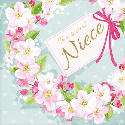 Special Niece Birthday Card