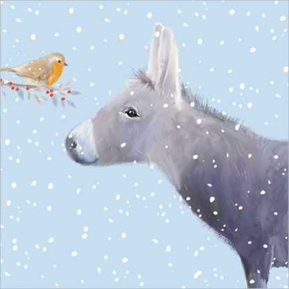Little Donkey and Robin Christmas Cards
