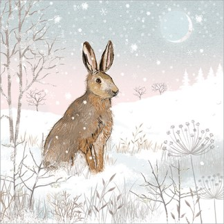 Hare in the Snow Christmas Cards