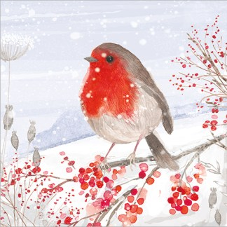 Robin with Red Berries Christmas Cards