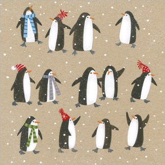 14 Penguins Christmas Cards