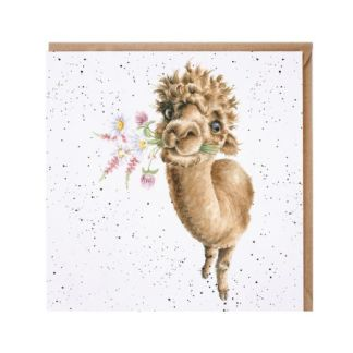 Hand Picked for you Alpaca card