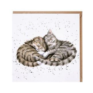 Sweet Dreams cat card