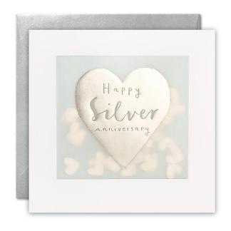 Silver Anniversary Shakies Card