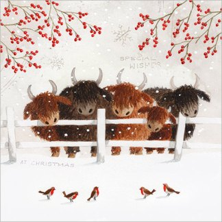 Highland Cows in the Snow Christmas Cards