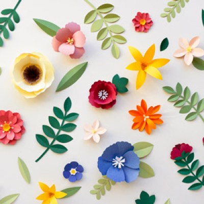 Paper for Flowers