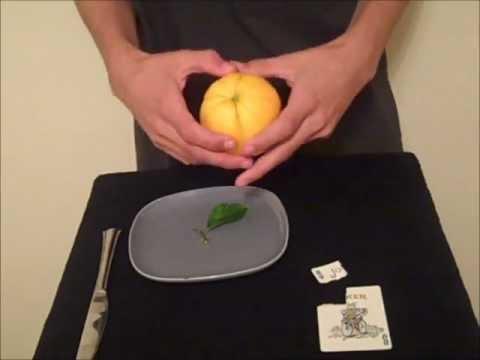 How to Do David Blaine's Card in Lemon Card Trick