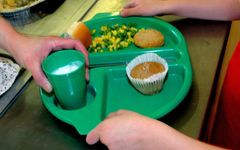 Council approves free school meals all-year-round to children from low income households 17