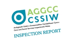 Inspection: Children's Services in Monmouthshire County Council 13
