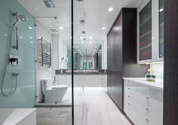Silver - Creative Spaciz Design Studio and South Shore Cabinetry - Sky High - after