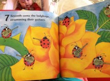 Barefoot Books Creepy Crawly Calypso