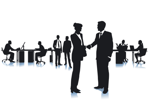 Business Consultant: An Informational Interview Report